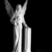 Angel-6900